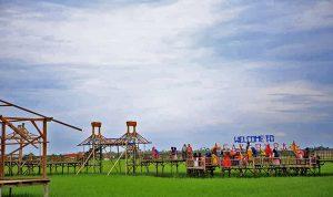 Sawah Kampung Bungaraya - Publiknews
