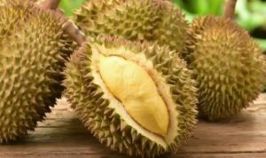 durian si boneng80x470 - Publiknews