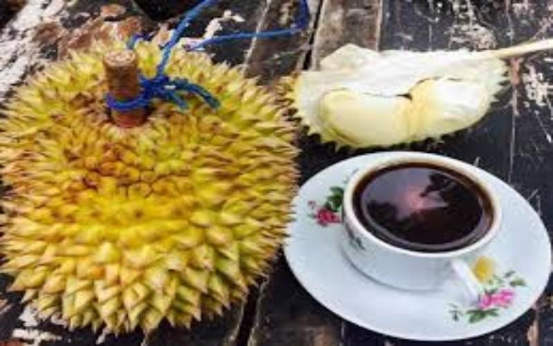 durian - Publiknews